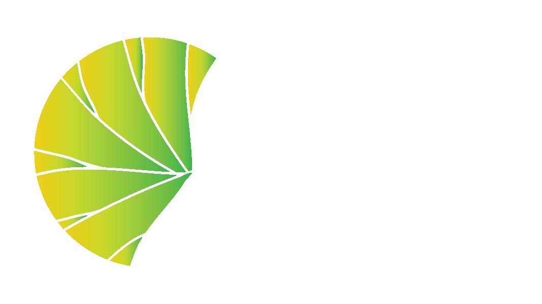 logoterramazon1